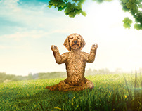 Guru Pet Food Campaign
