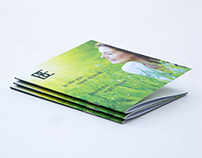 Botanical Extracts My Skin Kit Logo and Booklet Design