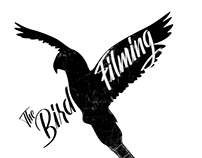 The Bird Filming - logo design