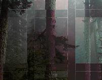 Wilderness Structuralism