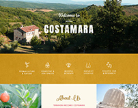 Costamara's website. Homepage snapshot.