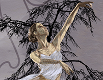 Ballet Dancer IV