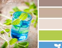 Design Color Palettes