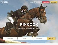 PINGOOK