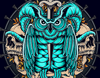 Owl [VIDEO]