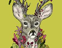 Yes deer No deer