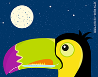 Tukan bei Nacht
