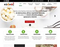 Diseño y programación de sitio web empresarial.