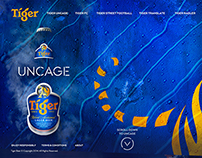 Tiger Beer Website Rewamp (Phase 2)