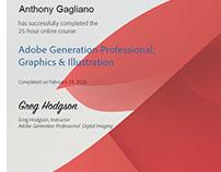 Adobe Generation Professional Design & Illustration
