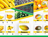 Folder Frutas Mirante.