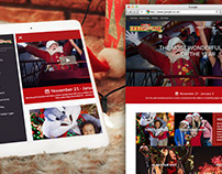 Six Flags Website Design / Holiday In The Park