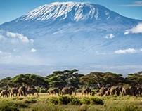 Challenge of Climbing Mount Kilimanjaro