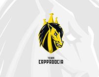 Team Cappadocia Esports Logo Design