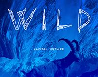 Wild Capital Outline