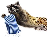 Raccoon/Cheetah
