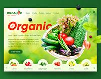 Organic Food & Fruits - Web Design