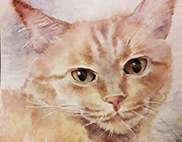 Cat Amadeo, watercolor