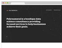 Polynumeral.com Custom Responsive WordPress Theme
