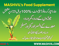 Mashvil's Flyer