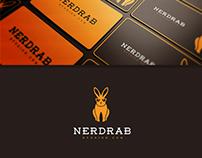 Nerd Rabbit Logo