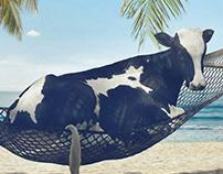 Purina - Summer Protection Program