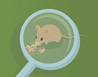 Ratones con carácter - infografía