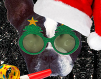 Motel - Dress up our lil pup Christmas Game
