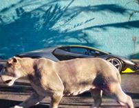 """100% CGI """"Lamborghini - Lioness"""