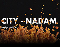 City Nadam - Integrated Design - data visualization