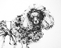 Chinese Ink Painting 07 - Poodle