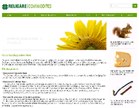 Religare Commodities