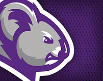 Columbia College Athletics Logo