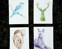 Graphite Drawings for Postcards