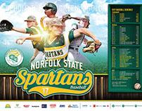 NSU 2016 Baseball Posters