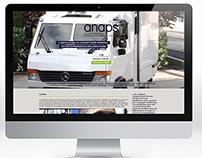 Site internet de l'ANAPS