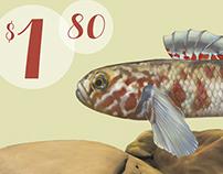 NZ Freshwater Fish