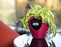 Lua, the sweetest smart planter