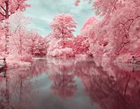 Prospect Park in Infrared