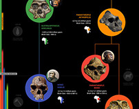 Creative Commons Infographic: Human Evolution