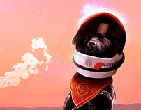 Laika - A Dog in Space