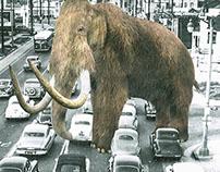 The modern mammoth