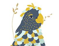 Pájaro Ilustrado Morxi