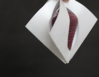 CHIK - CHOK : Packaging for spinning top