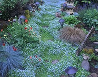 Make a memorable pathway with paving stones and plants