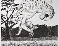 Pen and Ink and Graphite Drawings