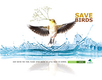 SAVE BIRDS, KEEP WATER FOR THEM