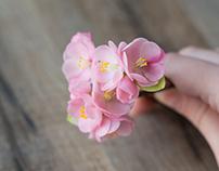 Spring blossom (part 2)