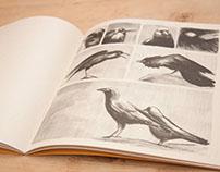 Meh Book - By Lina Moreno