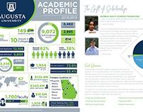 Georgia Health Sciences Foundation Endowment Report